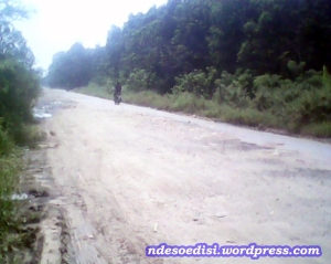 perbaikan jalan (3)