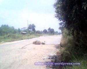 perbaikan jalan (4)