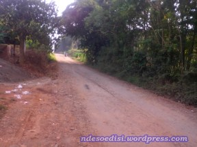 memasuki kebun Karet Cikumpay