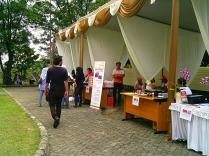 Festival KBI 2014 (12)