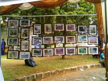 Festival KBI 2014 (14)