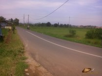 jalan alternatif Purwakarta (14)