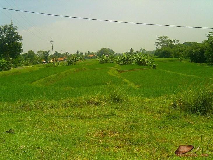 jalan alternatif Purwakarta (19)