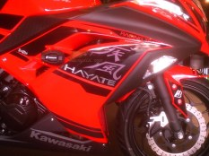 modifikasi ninja 250 R (9)