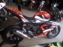 RR mono Ride It (5)
