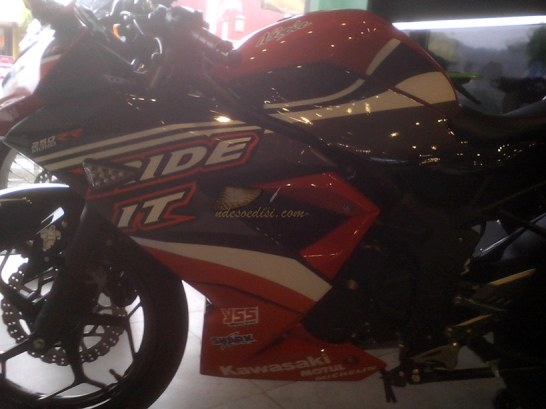 Stripping RR Mono Ride It (9)