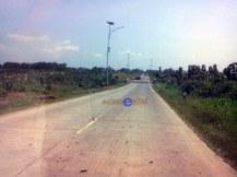 jalur tengah, kebun Jati
