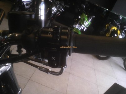 Kawasaki Estrella 250 (11)