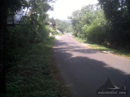 jalan-alternatif-Cibatu-Purwakarta-Wanayasa (5)