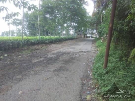jalur-Alternatif-Purwakarta-Sagalaherang-Ciater (2)
